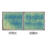 汎用水田における作物生育管理