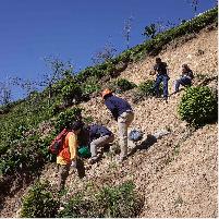 激化しつつある土砂災害の被害を軽減する