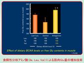 【アミノ酸による筋肉成分の制御】食事のアミノ酸量の約0.5%の調節による筋肉の呈味成分量を制御する技術