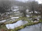 放棄棚田を再生したビオトープ群