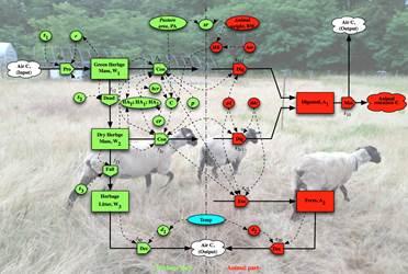 羊の放牧試験と放牧草地管理モデル