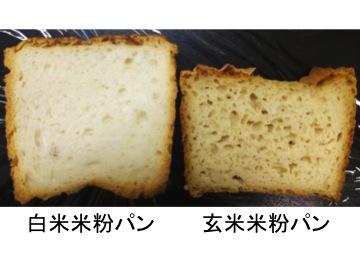 γ-アミノ酪酸を豊富に含む玄米米粉パン