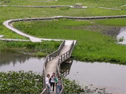 阿賀町たきがしら湿原でのサテライト実習