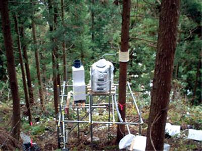 森林での大気汚染物質の観測