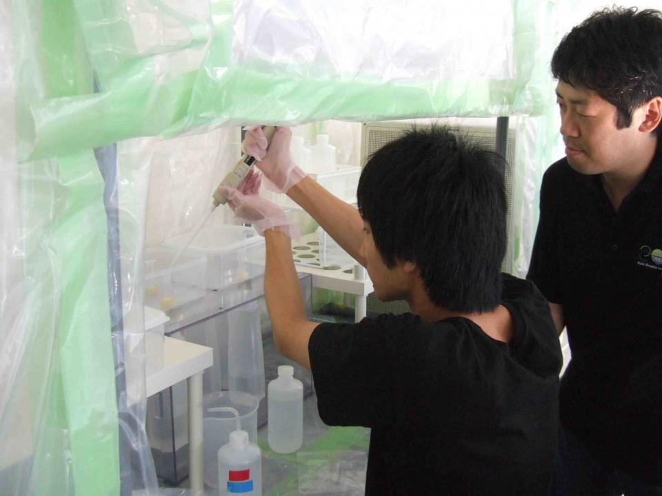微量化学分析実験