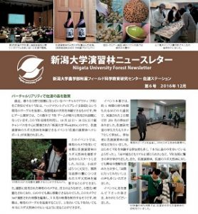 sado-newsletter2