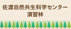佐渡自然共生科学センター演習林