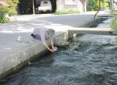 水路で鍋を洗う女性<br />「カワで洗うとさっぱりする」そうです。