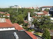 2006年6月までアメリカ合衆国のアトランタ・エモリー大学で研究を行っていました。緑に囲まれた美しいキャンパスです。