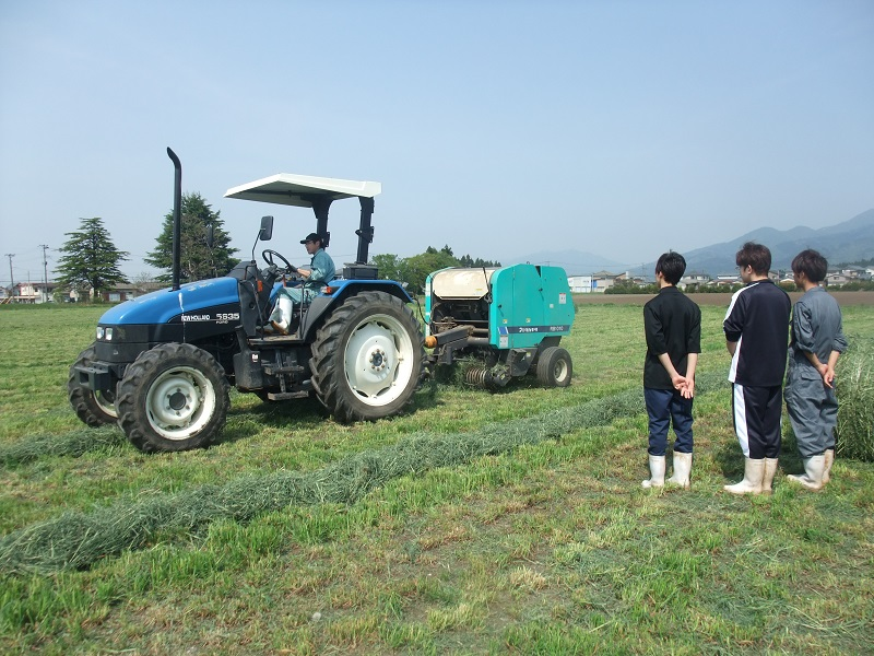 (牧場実習)牧草収穫見学